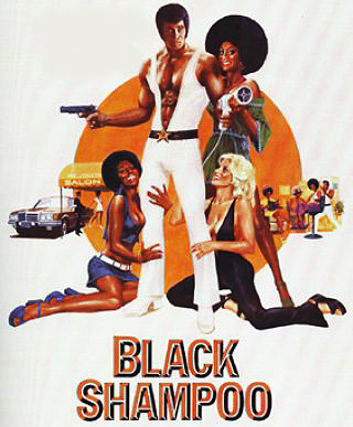 Blaxploitation Movies - Black Shampoo