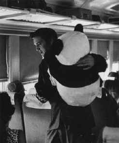 Elvis Presley - Train Panda